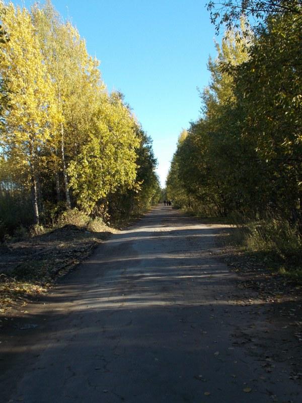 autumn13 041.jpg