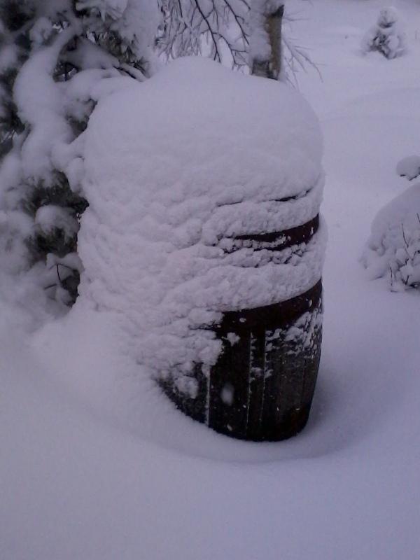 winter2015 033.jpg