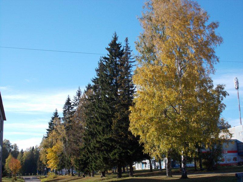 autumn13 1054.jpg