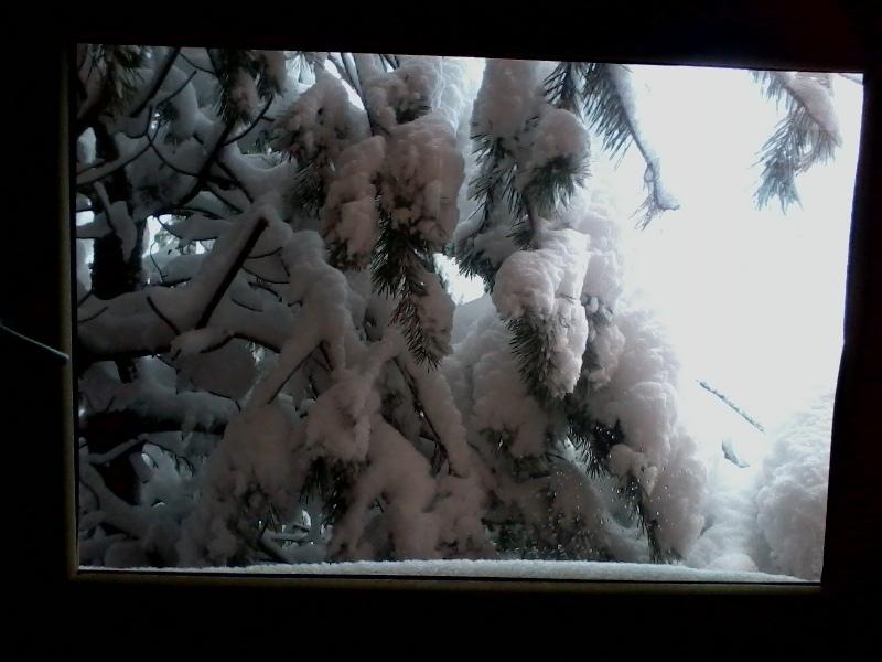 winter2015 027.jpg