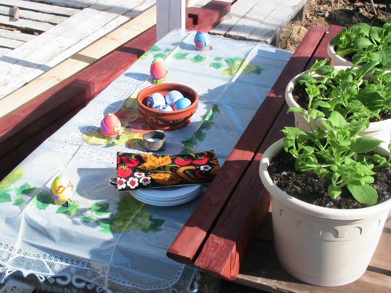 spring2011 010.jpg