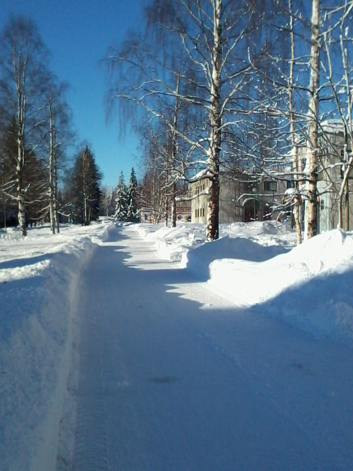 winter2015 0331.jpg