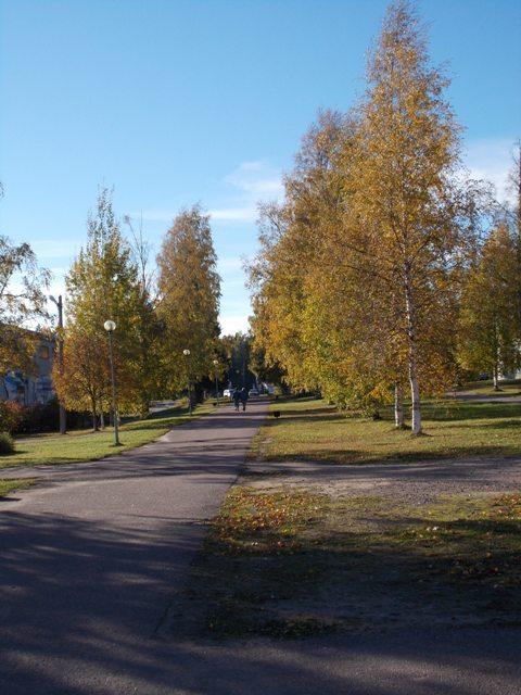 autumn13 1047.jpg